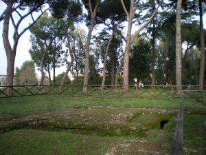 Resti archeologici del borgo medievale che circondava la Torre Vergata